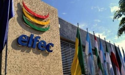 Una comisi贸n prepara informaci贸n financiera y legal de ELFEC