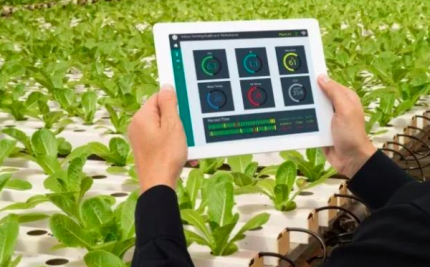 Pa铆ses de la regi贸n innovan el 谩rea rural  y la ganader铆a con tecnolog铆a inteligente